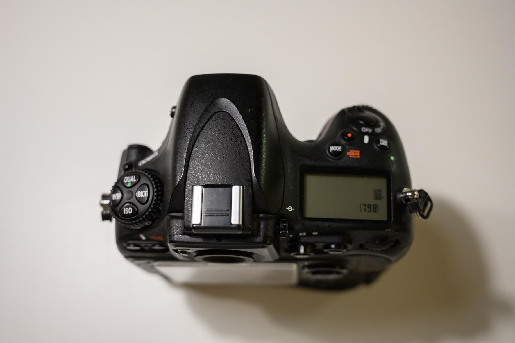 Nikon D800 003.JPG
