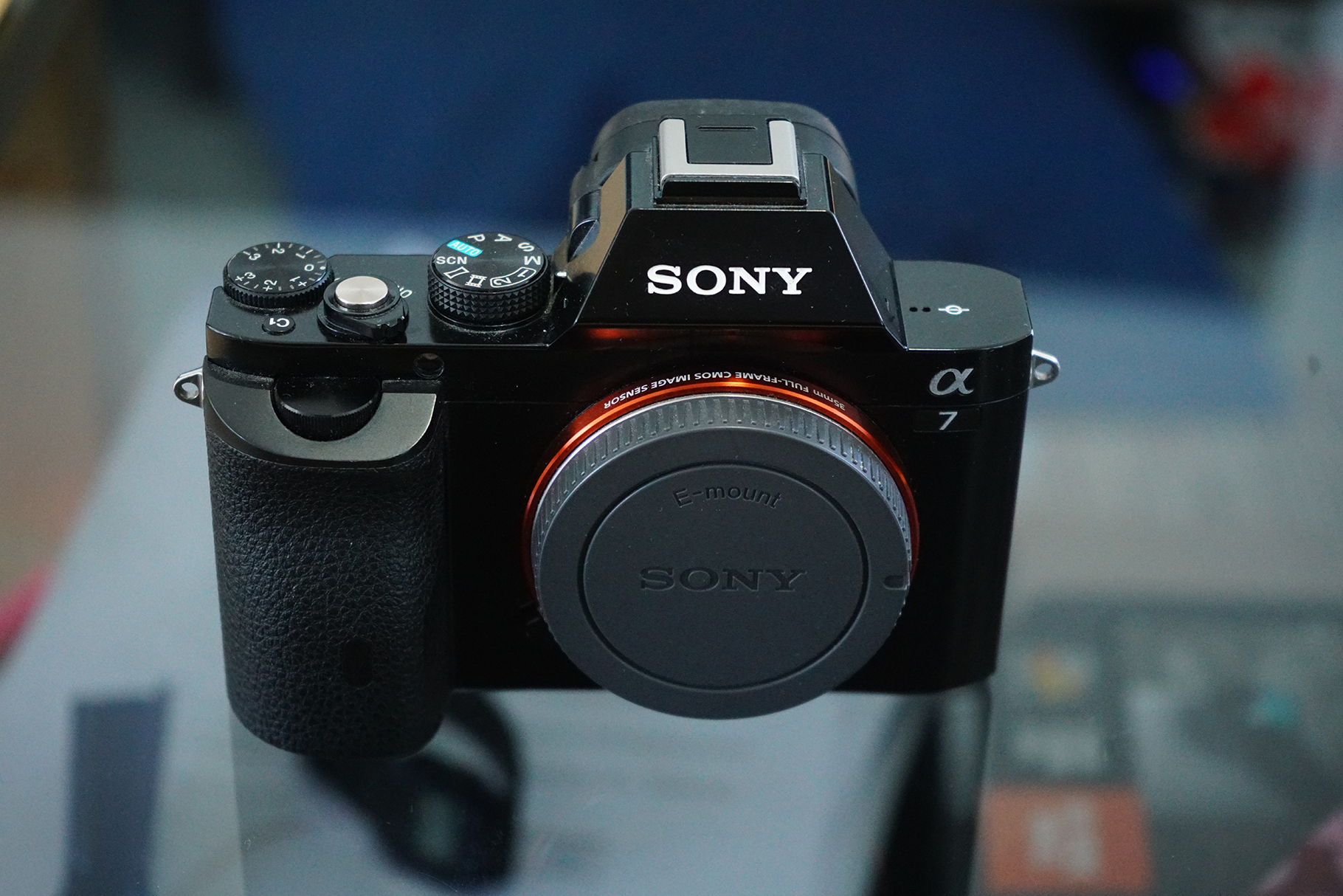 sonya7 (3).jpg